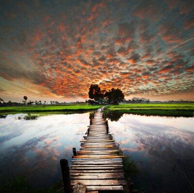 Fototapeta Tropické řeky