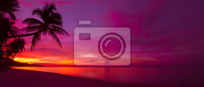Fototapeta Tropické slunce s palm tree silueta panorama