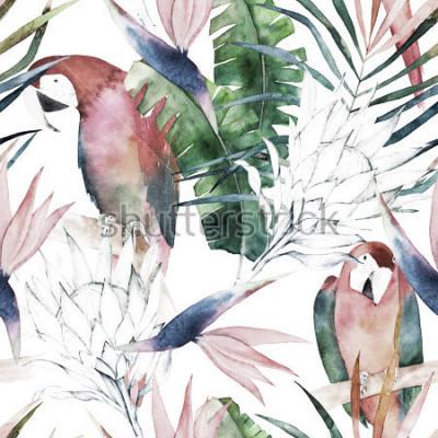 Fototapeta Tropický bezproblémový vzor s papoušci, protey a listy. Akvarel letní tisk. Exotické ručně kreslené ilustrace