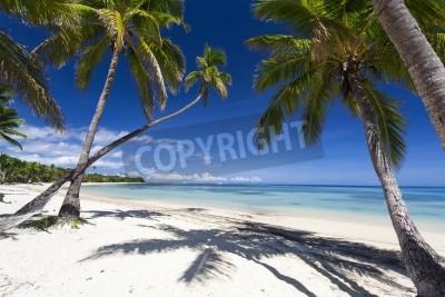 Fototapeta Tropický ráj na Fidži Island