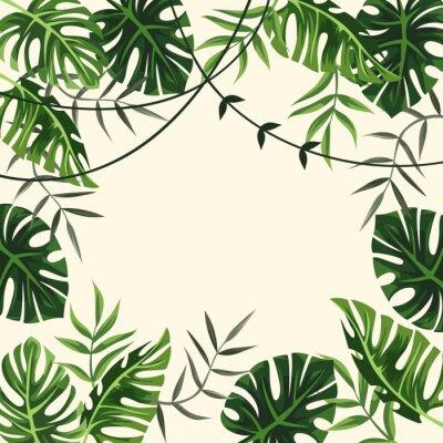 Fototapeta tropický rám. Pozadí. olistění. vektorové ilustrace