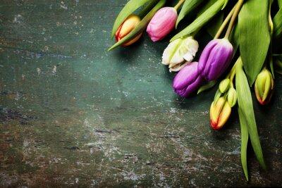 Fototapeta Tulipány na dřevěném pozadí