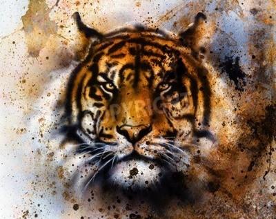 Fototapeta tygr koláž na barevné abstraktní pozadí, rez struktuře, volně žijící živočichy, oční kontakt.