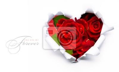 Umění banner design rudých růží a papír srdce na Valentýna