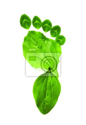 umění, ekologie symbol zelená stopa