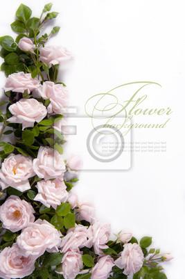 Umění květina Pozadí pohlednici