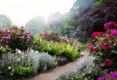 Fototapeta Umění květiny ráno v anglickém parku