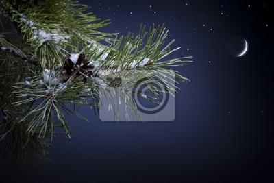 Umění vánoční noc