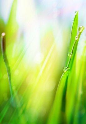 umění zelená jarní abstraktní světlé pozadí