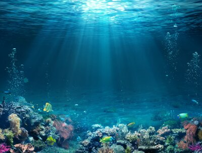 Fototapeta Underwater Scene - Tropical Seabed With Reef And Sunshine