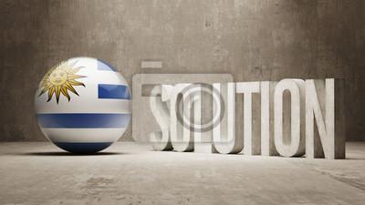 Uruguay. Solution Concept.