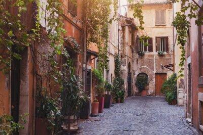 Fototapeta Útulný ulici v Římě, Itálie