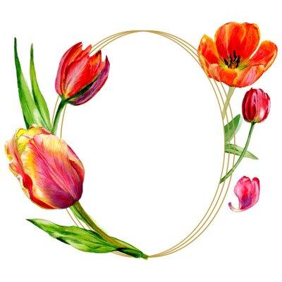 Fototapeta Úžasný červený Tulipán květ se zelenými listy. Sada akvarel zázemí obrázku.