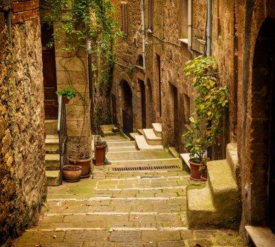 Fototapeta Úzké ulice středověkého tuf centra Pitigliano se zelenými rostlinami a dlážděných schodů, cestovat Itálie ročník pozadí