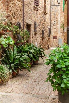 Fototapeta V ulicích starého italského města Pienza, Toskánsko