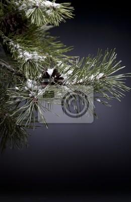 Vánoční noc