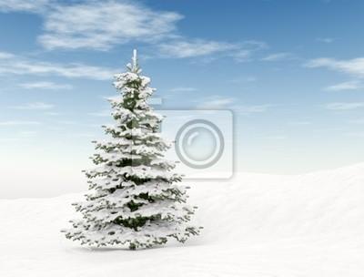 Fototapeta Vánoční strom a modrá obloha