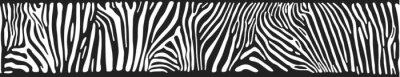 Fototapeta Vector background with zebra skin
