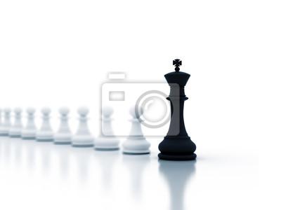 Vedení obrázek