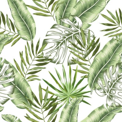 Fototapeta Vektorové bezproblémové vzorek. Tropické džungle listoví ilustrace. Exotické rostliny zeleň. Rádio příroda.