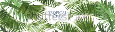 Fototapeta Vektorové horizontální žluté listy na bílém pozadí. Exotický botanický design pro kosmetiku, lázně, parfémy, výrobky pro zdraví, vůně, svatební oznámení. Nejlepší jako webový banner