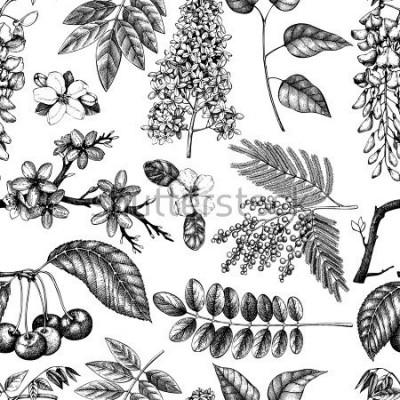 Fototapeta Vektorové pozadí s ručně kreslené kvetoucí stromy ilustrace. Sbírka náčrtu jarních květin. Květinový bezešvé vzor