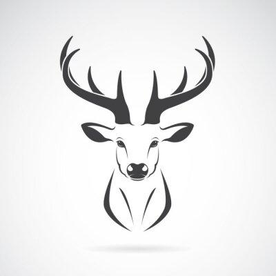 Fototapeta Vektorový obrázek designem jelení hlavy na bílém pozadí