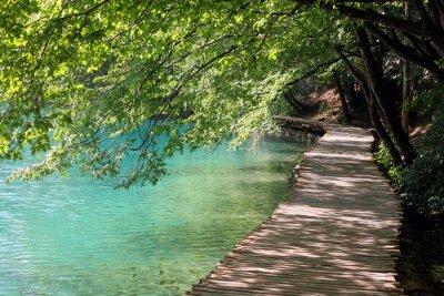 Fototapeta Velkolepý vodopád krajiny