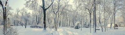 Fototapeta Veřejný park z Evropy se stromy a větve pokryté sněhem a ledem, lavice, sloupu veřejného osvětlení, terén.
