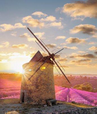 Fototapeta Větrný mlýn s Levander pole proti barevný západ slunce v Provence, Francie