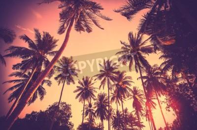 Fototapeta Vintage tónovaný pozadí dovolené z palmových siluet při západu slunce.