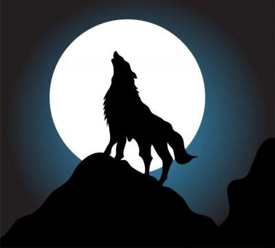 Fototapeta Vlk vytí pozadí