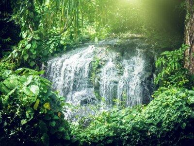 Fototapeta vodopád v džungli Seychely, ostrov Mahé