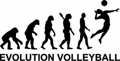 Fototapeta Volejbal Evolution