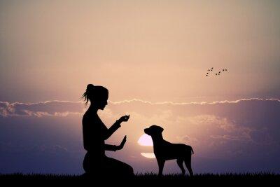 Fototapeta vycvičený pes při západu slunce