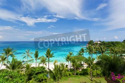 Fototapeta Výhled na moře z tropické pláže s kokosovými palmami