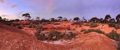 Fototapeta WA Balladonia Red Soil 2 Panorama