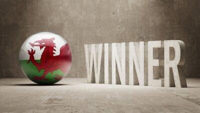 Walesu. Vítěz Concept.