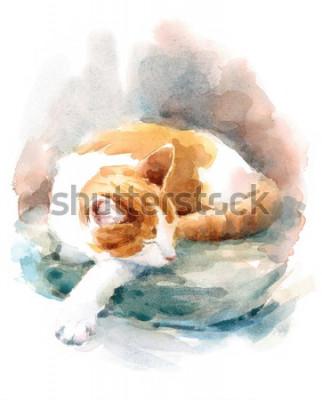 Fototapeta Watercolor Cat Sleeping on the Pillow Hand Painted Pet Portrait Animal Illustration