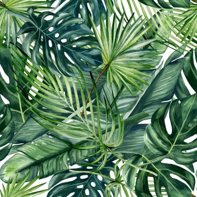 Fototapeta Watercolor hand painted seamless pattern with green tropical leaves of monstera, banana tree and palm on white  background.