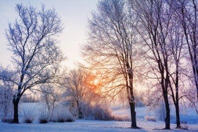 Fototapeta winter sunset