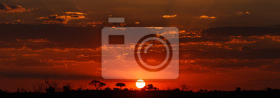 Fototapeta Západ slunce - Chobe NP Botswana, Afrika