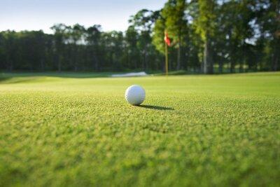 Fototapeta Zblízka golfový míček na green