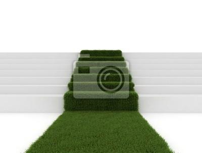 Fototapeta Zelená tráva cesta koberec
