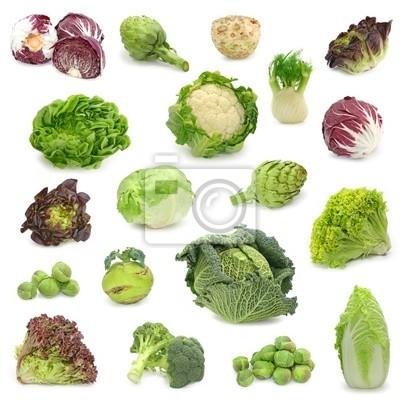 Fototapeta zelí a zelené rostlinné sbírky