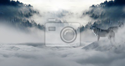 Fototapeta zimě sníh