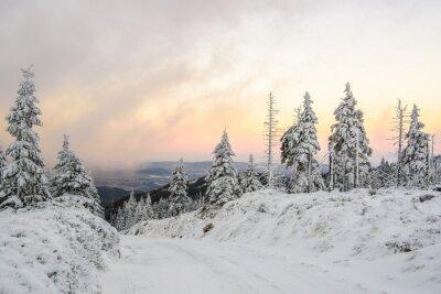 Fototapeta Zimowa droga w górach