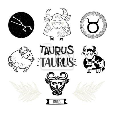 Znameni Ikony Nastaveno Sbirka Horoskopu Volna Kresba Byk