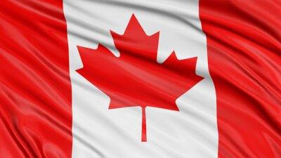 Nálepka 3D Canada Flag