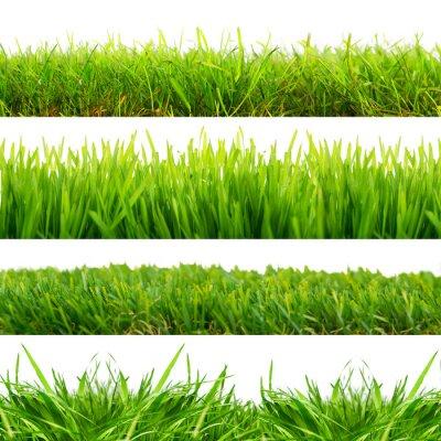 Nálepka 4 Wiesen Gras Freisteller